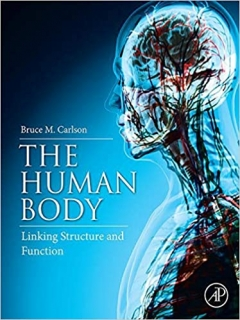 THE HUMAN BODY, LINKING STRUCTURE AND FUNCTION